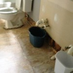 Emergency Home Repairs in Charlotte NC